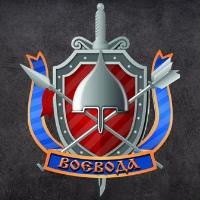 Альянс структур безопасности «Воевода»