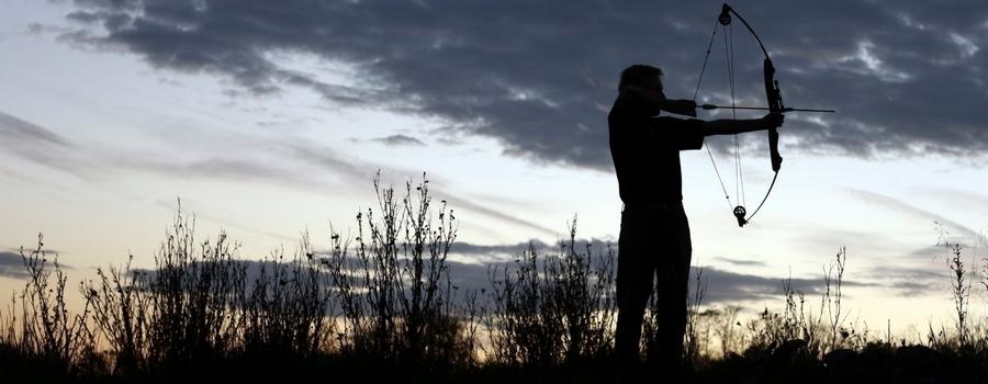 В Волгоградской области в охрану ищут лучников, умеющих стрелять с коня!